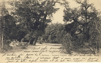 Carte postale Barbizon