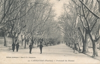 Carte postale Carpentras
