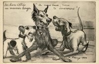 Carte postale Chien-Allies - Humour